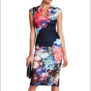 Ted Baker London Brynee Bouquet Dress, Size 1
